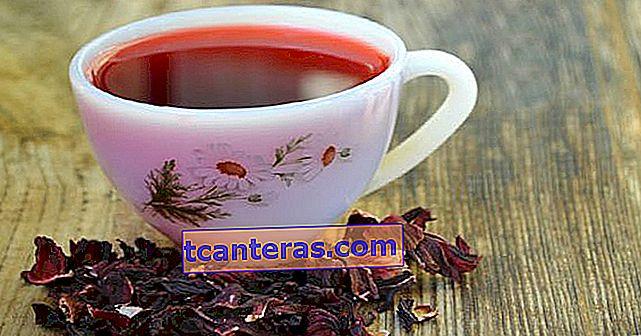 10 hierbas y té con efecto de masaje en los dolores musculares y articulares