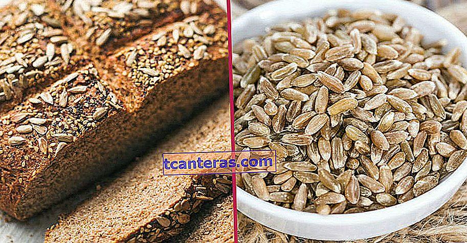 Debe conocerla de inmediato: trigo Siyez, uno de los alimentos raros que no está modificado genéticamente