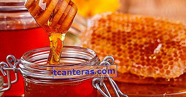 Información que duplica el horizonte: ¿por qué es útil la miel, se echa a perder?