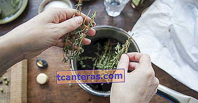 Una especia curativa con beneficios tanto del té como del aceite: el tomillo