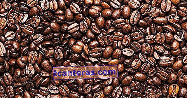 ¿Cómo tostar el grano de café verde y convertirse en un café con leche?
