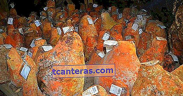 Delicioso queso hundido producido en una cueva y que gana 3,5 millones de liras al año para los aldeanos