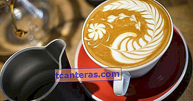 Introducción rápida al arte del café: un diccionario de términos del café que ha escuchado pero no conoce