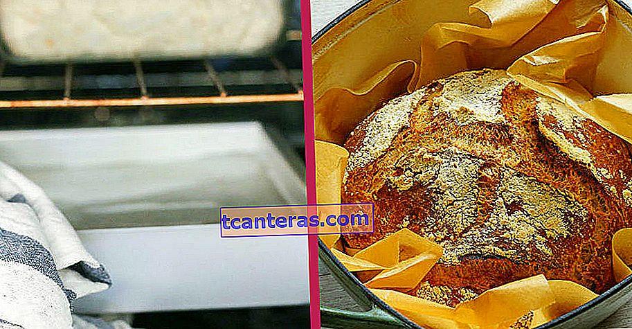 Тут прихована таємна правда: чому при випіканні хліба в духовку кладуть воду?