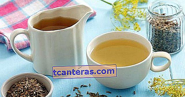 El milagro natural que debes conocer antes de que sea demasiado tarde: té de hinojo