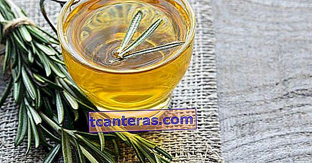 Un sabor curativo desde su té hasta su aceite: romero