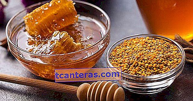 Polen de abeja: un alimento que se cura por sí mismo que debe conocer de inmediato