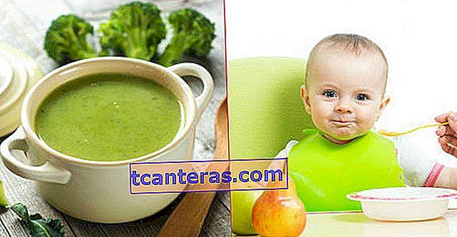 Sopas que llenan la boca para niños pequeños y lo que necesita saber sobre la nutrición del bebé