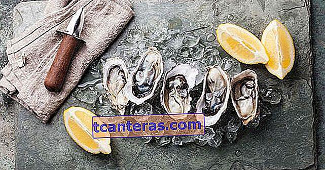 Cómo comer ostras que vuelven adictas a los afrodisíacos, ¿cuáles son sus beneficios?