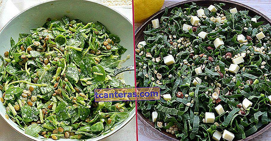 12 ситних і різних рецептів зеленого салату для тих, хто в наші дні звертає увагу на легке харчування