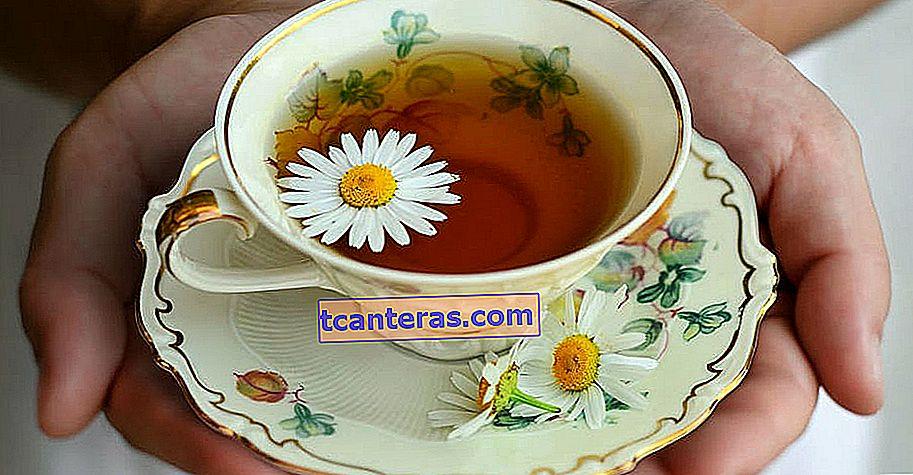 Природне диво - засіб від безсоння під час розслаблюючого травлення: Чай з ромашки