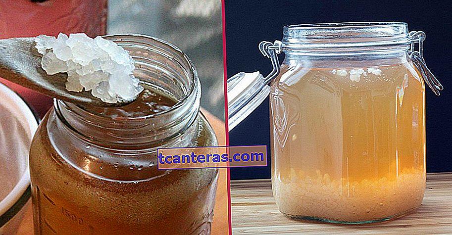 La solución a los problemas intestinales, la más popular recientemente, es: kéfir de agua